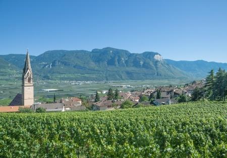 Tramin Südtirol Gewürztraminer