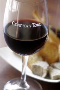 Concha Y Toro Weinglas Rotwein